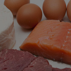 Egg meat and fish protein source
