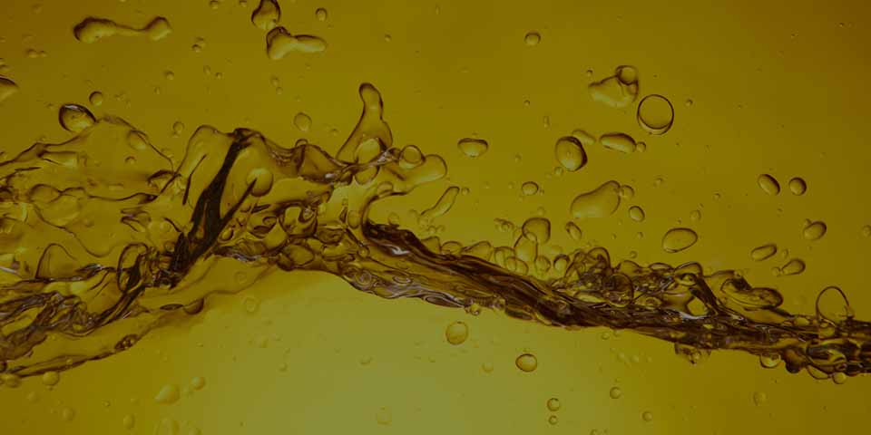 Seed and vegetable oil